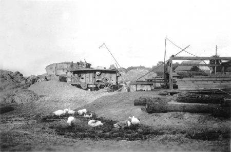 Dreschplatz nördlich vom Gutshaus, etwa 1952