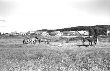Schlakendorf, Juni 1986