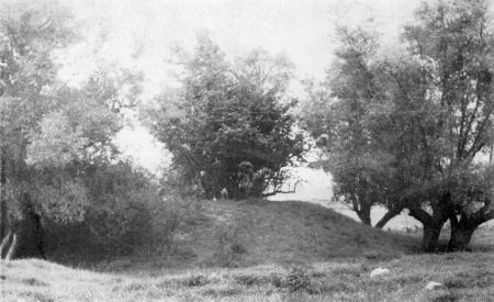 Der Turmhühel in der Wiesenniederung bei Schlakendorf