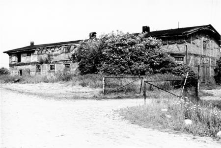 Stallgebäude in Schönkamp (Juni 1981)
