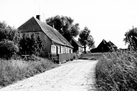 Wohnhäuser in Schönkamp (Juni 1981)