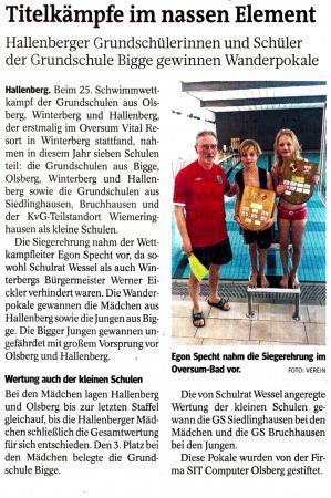 Schwimmwettkampf 2013