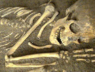 Skelett aus der Zeit der Bandkeramiker. Fundort: Schälzig