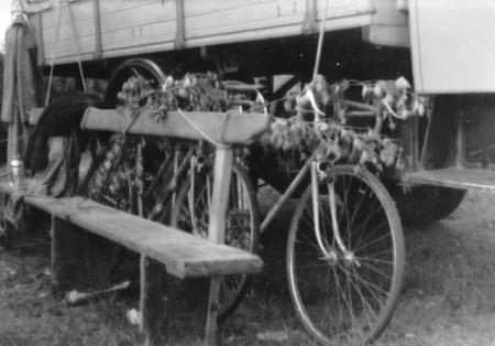Tarnung der Fahrräder in Ahlbeck, 1956