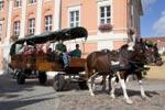 Stadtführung auf dem Kremser