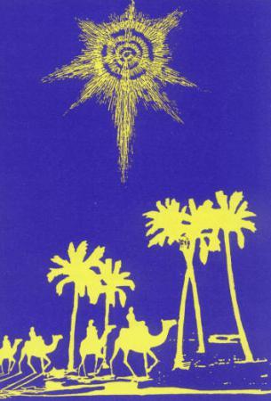 stern über palmen.jpg