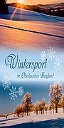 t_winter.jpg