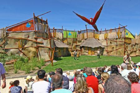Vogelpark Marlow -Tiershow