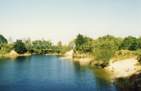 Die um 1963 stillgelegte Lehmgrube im Wald wird auch zum Baden beutzt