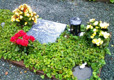 Urnengrab gemeinschaftsanlage1 - Kopie.jpg