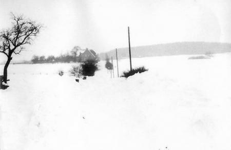 Winter in Warsow (2)