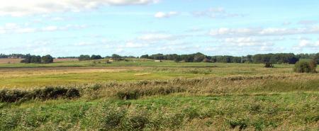 Die Teichweide mit dem Werder im Hintergrund