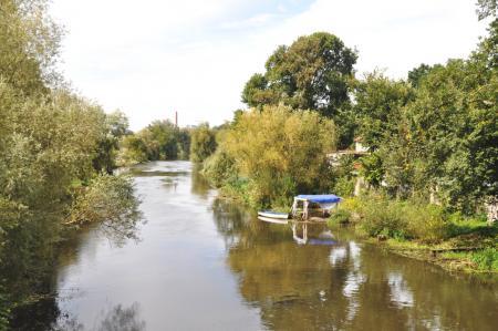 Die Alte Oder bei Wriezen
