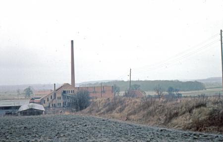 Blick zur Ziegelei 1963