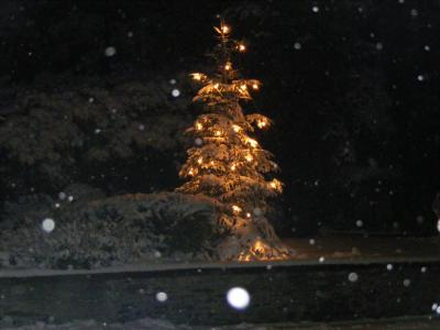 Weihnachten in Dalberg