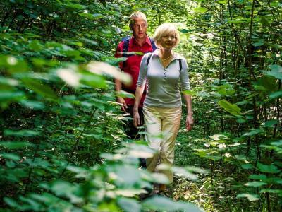 Romantischer Fußweg zur Schinderhanneshöhle