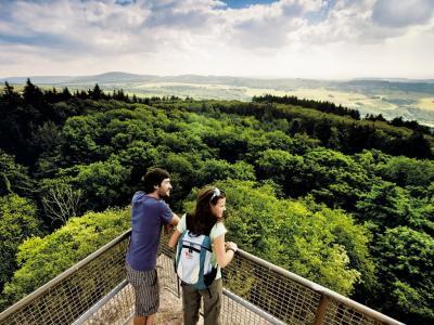 Blink vom Turm des Koppenstein über den Soonwald zum Idarwald