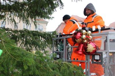 Fotoalbum Aufstellen des Weihnachtsbaumes