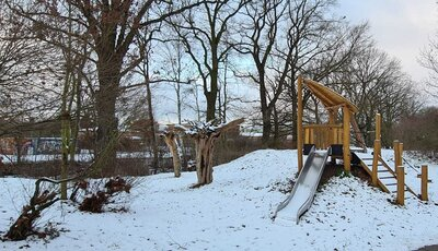 Foto des Albums: unser Garten (19.01.2021)