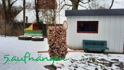 Fotoalbum Vogelfutterstelle