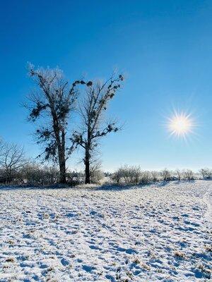 Fotoalbum Winterimpressionen