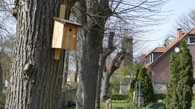 Foto des Albums: Die Vögel freuen sich (28.04.2021)