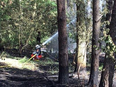 Fotoalbum Falkenseer Feuerwehr unterstützt beim Waldbrand in Bötzow und setzt erstmals den Löschroboter ein