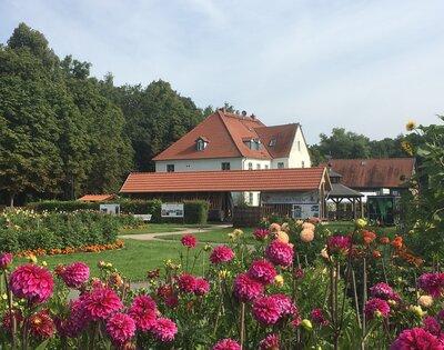 Timm' scher Garten mit Blick auf das Salzmuseum