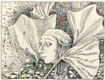 Grafiken von Ulrike Wodner