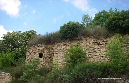 Burg-Schraplau
