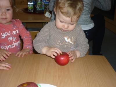 Fotoalbum Apfelprojekt der orangenen Gruppe (Alter der Kinder 1-2 Jahre)