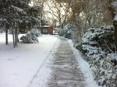 Foto des Albums: Winterimpressionen im Kleinen Spreewald Wahrenbrück (05.01.2017)