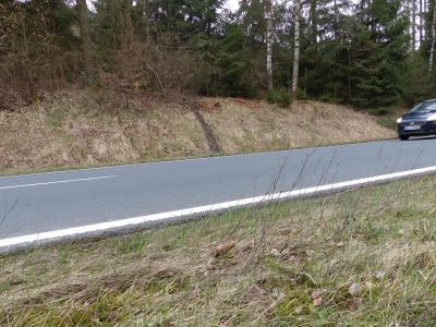 Fotoalbum Illlegale Motocrossfahrer missbrauchen Waldgebiete als Rennstrecke