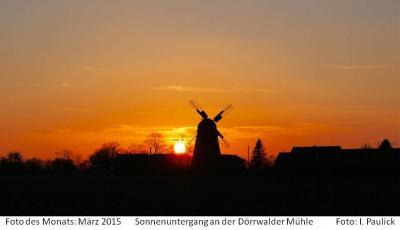Foto des Albums: Monatssieger Fotowettbewerb Großräschen 2015 (07.08.2017)