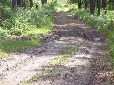 Fotoalbum Waldwegeausbau durch die Forstbetriebsgemeinschaft Schlenzer