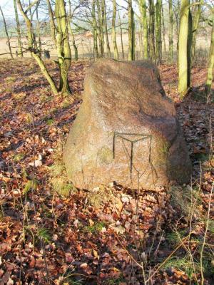 Fotoalbum Archäologische Grabungen auf dem Galgenberg