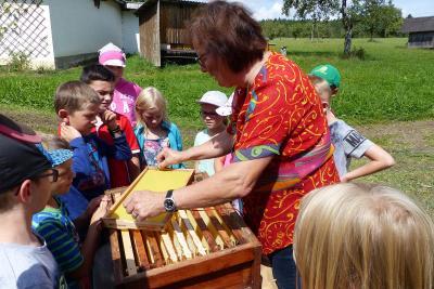 Fotoalbum Ferienprogramm 2017 - Rund um die Bienen