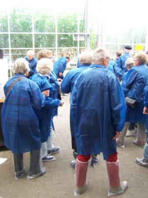 Fotoalbum Besuch in der Tomaten- und Paprikaplantage in Hemmingstedt