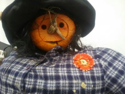 Fotoalbum Basteln für Halloween ...