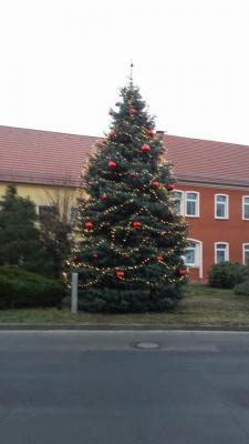 Foto des Albums: Weihnachtszeit in Wahrenbrück (08.01.2018)