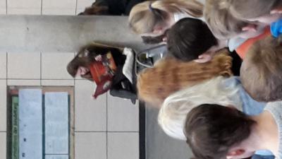 Fotoalbum Der Nussknacker: Weihnachtliche Aufführung der Klassen 3/4