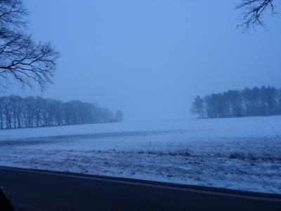 Foto des Albums: Winterimpressionen mit und ohne Schnee in Uebigau-Wahrenbrück (07.03.2018)