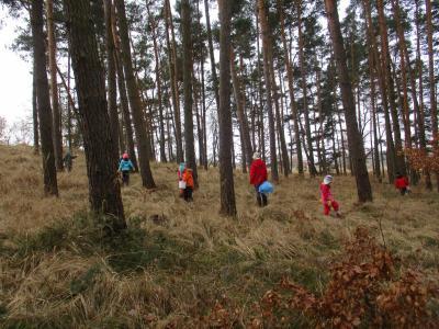 Fotoalbum Aufräumen im Schönower Wald/Kinder erleben den Wald