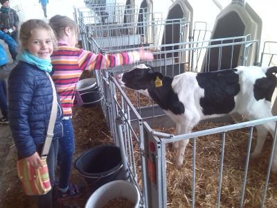 Fotoalbum Exkursion zur Agrargenossenschaft Laas