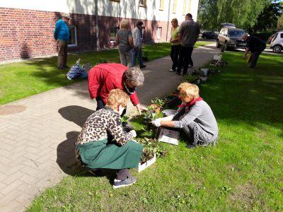 Fotoalbum 17. Pflanzentauschmarkt vor der Heimatstube