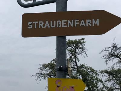 Fotoalbum Straußenfarm Klasse 2b