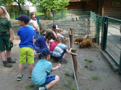 Fotoalbum Wandertag der Klassen 1a & 1b in den Eilenburger Tierpark