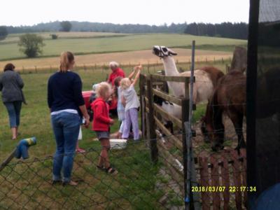 Fotoalbum Ausflug zum Bauernhof