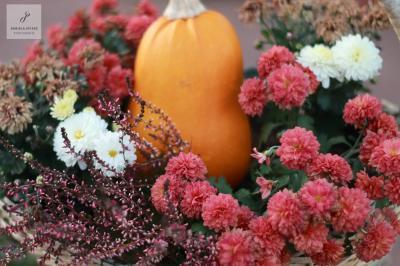 Fotoalbum Herbstfeuer in Sülte