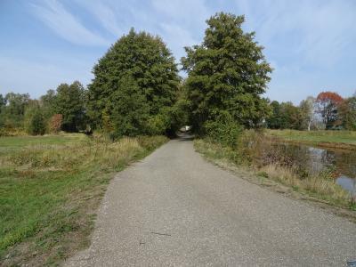 Foto des Albums: Herbstimpressionen Wahrenbrück und Umgebung (09.10.2018)